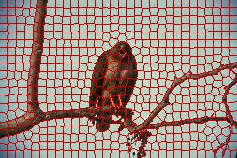 thesis report on image segmentation