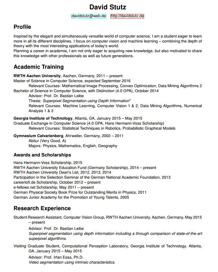 figure 1 click to enlarge the old simple design of my cv